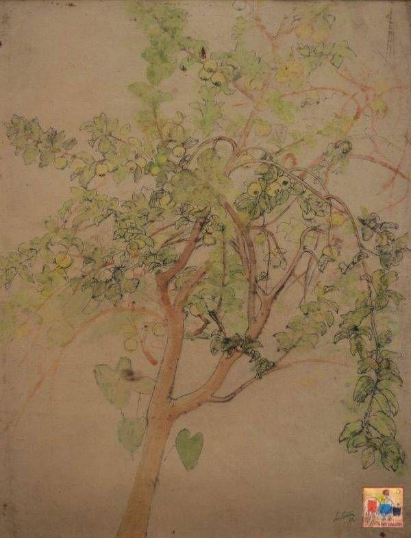 Lưu Văn Sìn, cây ổi, màu nước, 42×55, 1960
